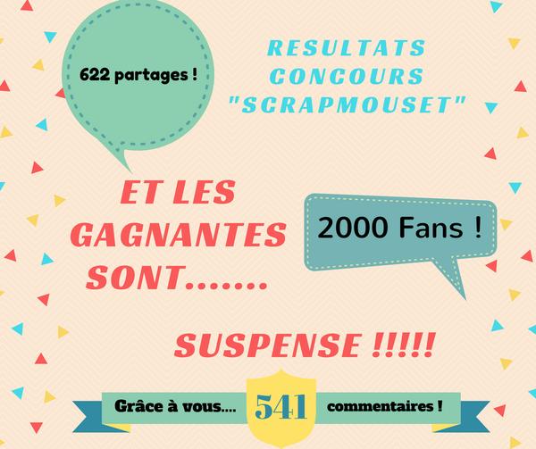 Résultats du Méga Concours pour le lancement de SCRAPMOUSET