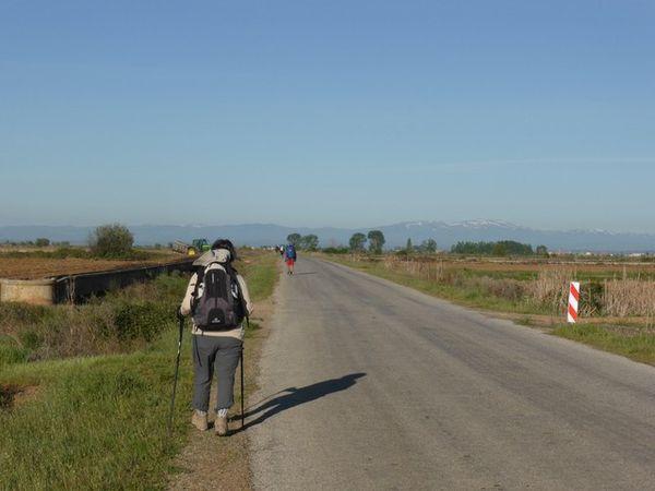 El Camino 7...9...Villares de Orbigo