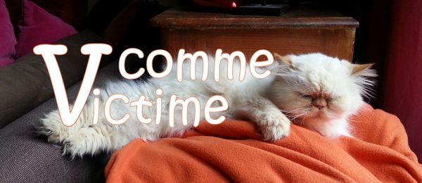 V comme Victime