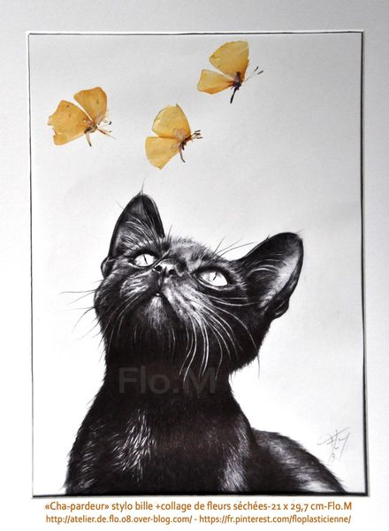 chat-dessin-stylo bille-format A4