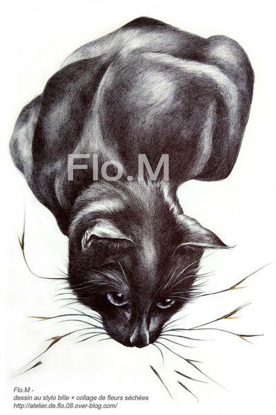 Dessin-Chat-Stylo bille-bic-artiste-Flo.M-Auvergne