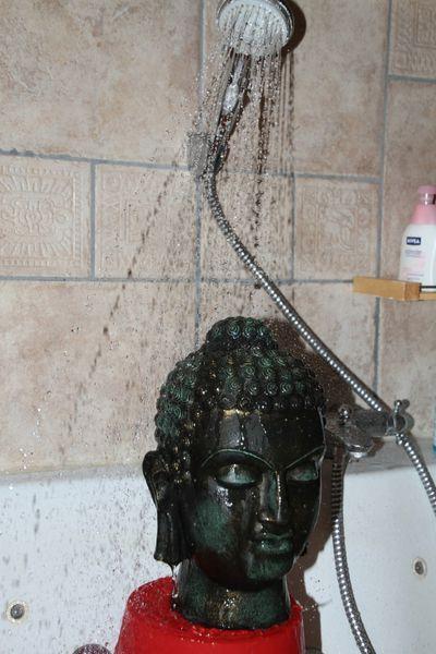 alerte canicule : je protège mon bouddha !