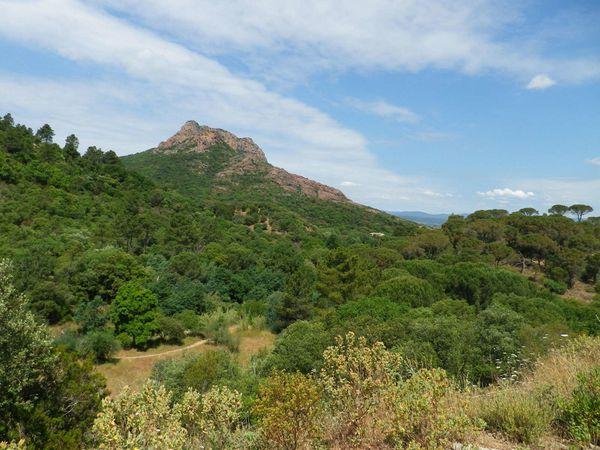 La Rando du Rocher à Roquebrune le 24 mai 2015