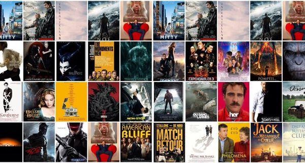 Mon top 2015 non-exhaustif des films que j'aurais vraiment aimé voir au ciné en 2014 mais que j'ai pas pu :