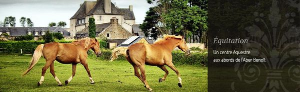 Cheval, handicap et expo photo en Bretagne