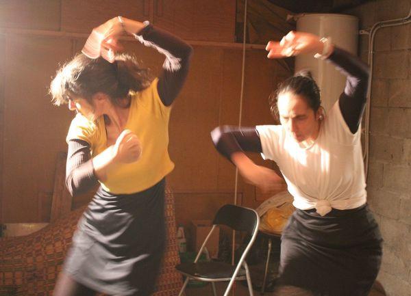 Blog De la Poussière et des Etoiles : de quoi parle le spectacle?