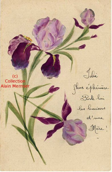Iris -2234- Peint main. Hand painted. France.