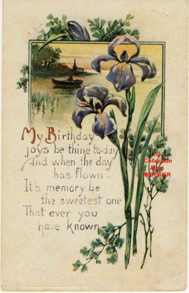 Iris -2086- My birthday joys be thine... USA
