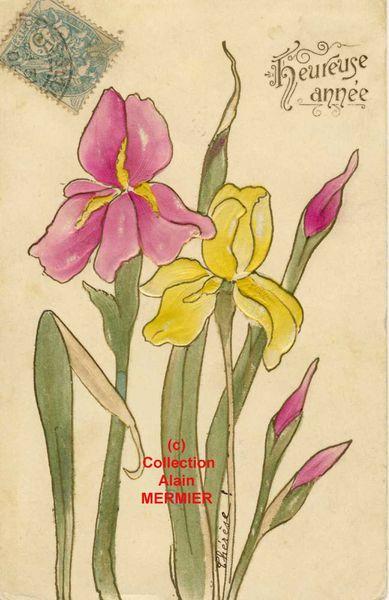 Iris -2072- Heureuse année. France. 1905.