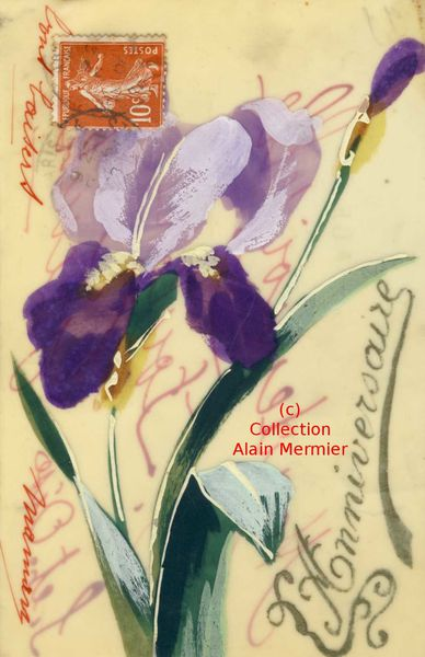 Iris -3552- Peinte main. Anniversaire. Carte celluloïd. France. 1910.