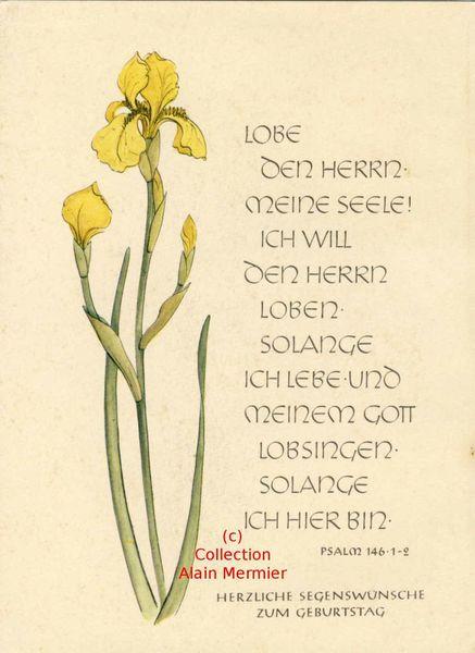 Iris -3608- Carte moderne. &quot&#x3B;Lobe den herrn mein seele !&quot&#x3B; Psaume. Allemagne.