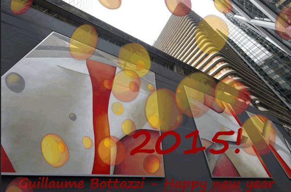 Guillaume Bottazzi - New Year 2015