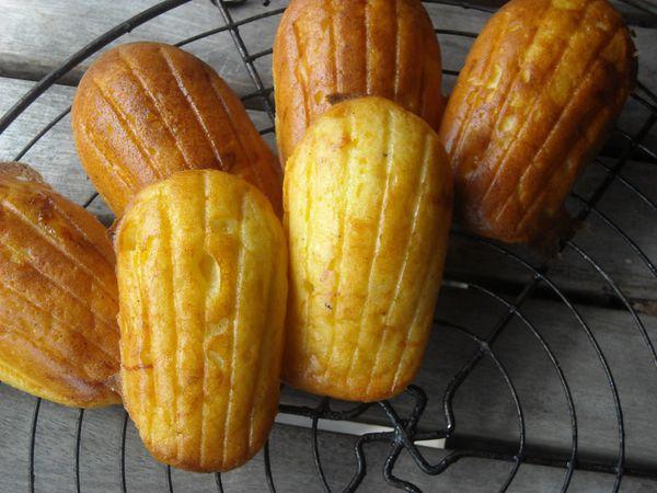 Madeleines et muffins au maïs, mozzarella et muscade