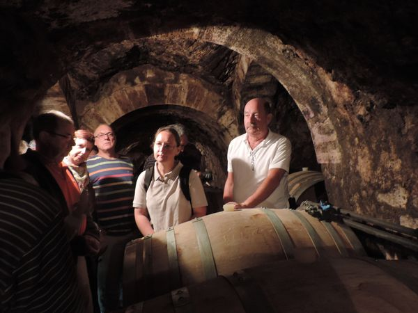À Pouilly-sur-Loire, un après-midi dans les vignes avant le frais d'une cave ...