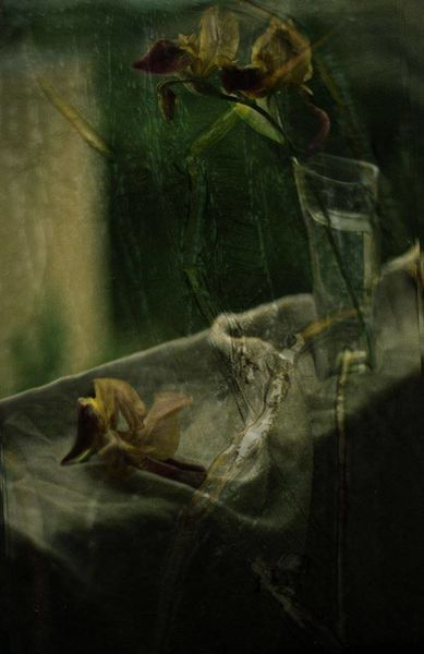 Passion to Vincent (Tribute to Vincent Van Gogh), photographie de Katia Chausheva.