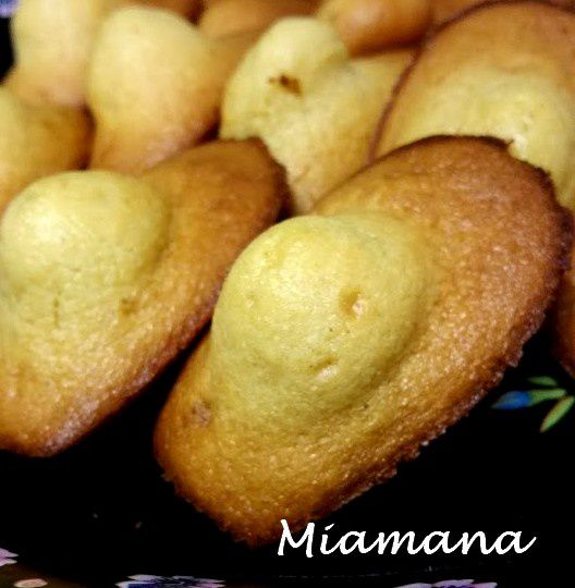 Madeleines dodues