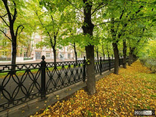 Vieux boulevard, l'automne