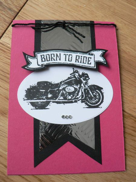 one wild ride de stampin'up version fille