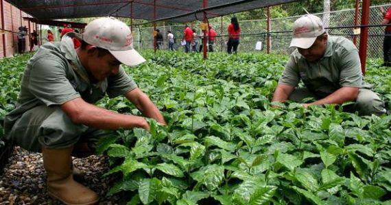 El sueño de la agroecología nacional