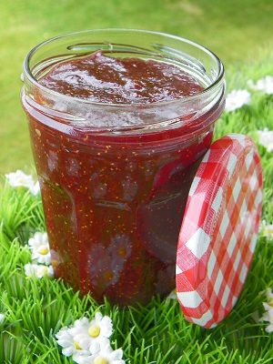 confiture de rhubarbe thermominoux