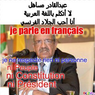 Abdelkader Messahel, devant les Français, parle en Français.