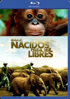 NACIDOS PARA SER LIBRES (2011)