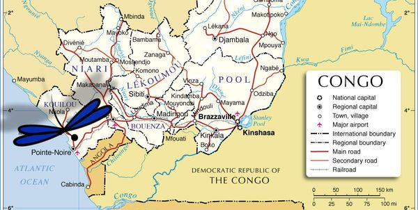 Congo Brazza Pointe Noire