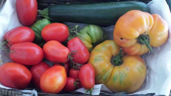 salade aux fruits et légumes du potager
