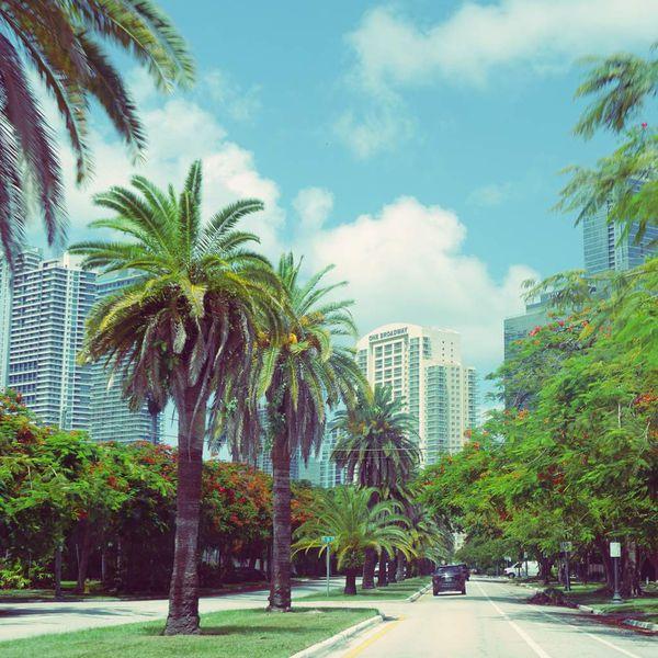Instantanés de Floride : notre 3ème semaine