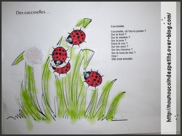 . Dans mon jardin il y a &quot&#x3B; des coccinelles &quot&#x3B;.