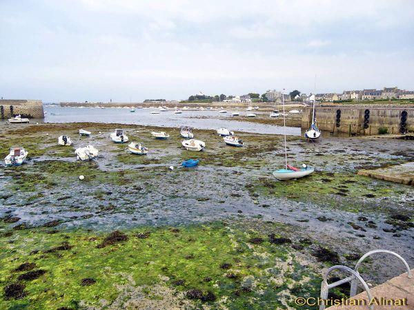 Roscoff avec la marée basse