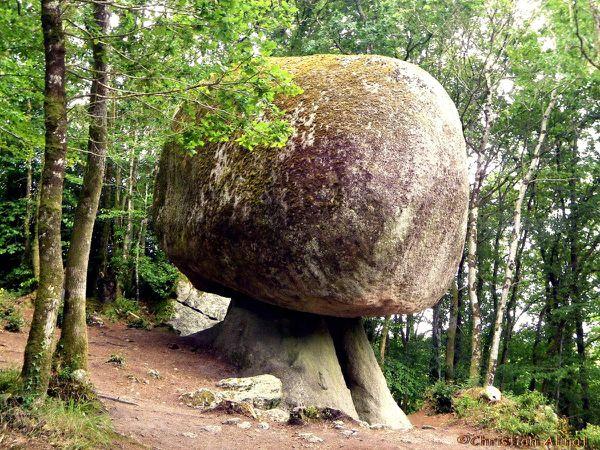 Le champignon de la forêt d'Huelgoat