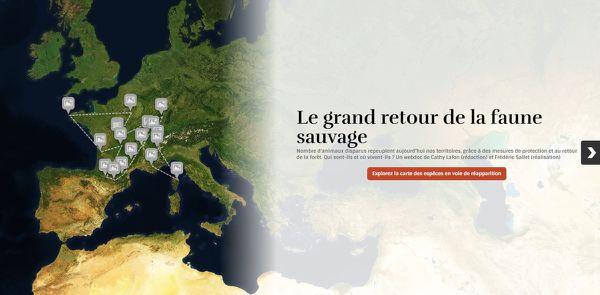Biodiversité : la carte interactive des espèces sauvages qui reviennent en France