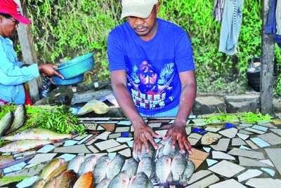 Journées aquacoles – Des poissons d'élevage certifiés en vente