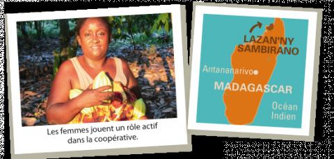 Production de cacao - Un exemple de commerce équitable