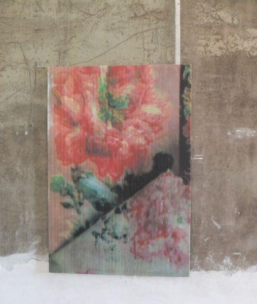 Gabriel Orozco - Fleurs Fantômes. Chaumont sur Loire