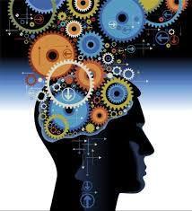 Le cerveau face aux écrans