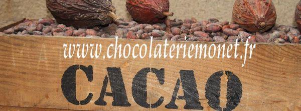 Notre nouvelle boutique de vente en ligne de chocolats