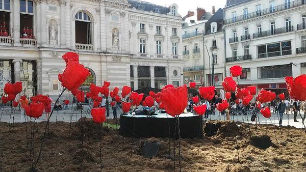 L'odyssée végétale des Accroche-Coeurs