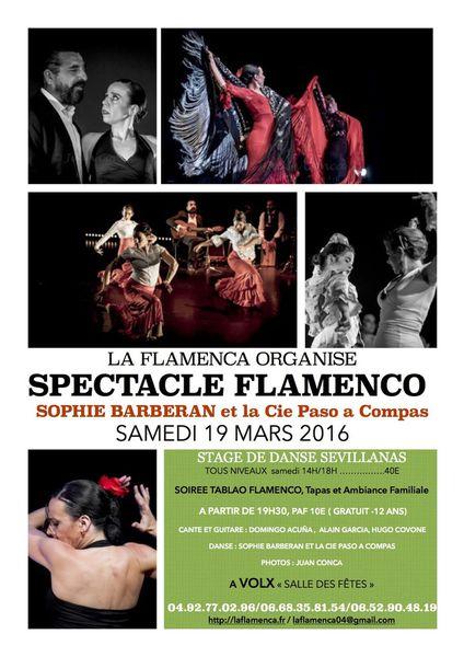 spectacle danse flamenca Volx