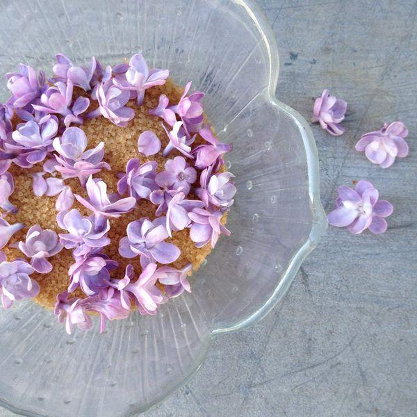 Sucre de fleurs de lilas