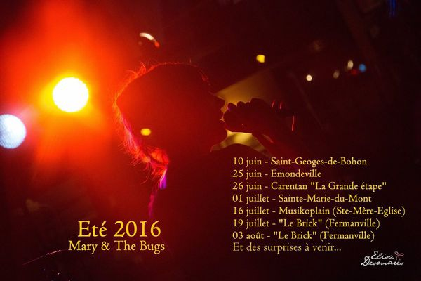 Mary and the bugs Summer Tour