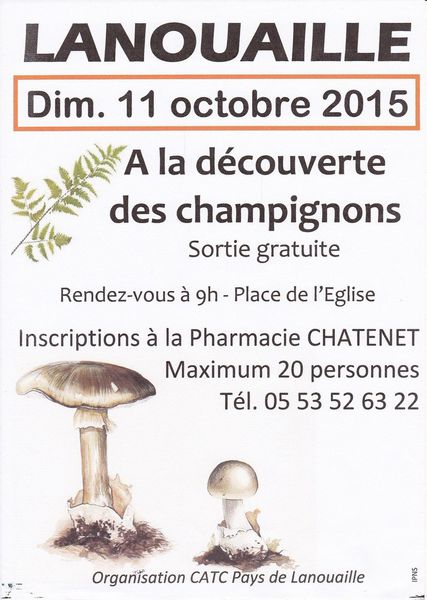 Initiation à la mycologie