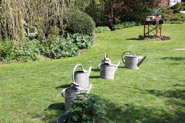 Visite du jardin de Brigitte et Daniel Faucon
