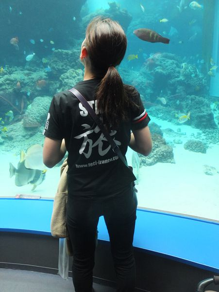 13 avril : Aquarium Churaumi d'Okinawa