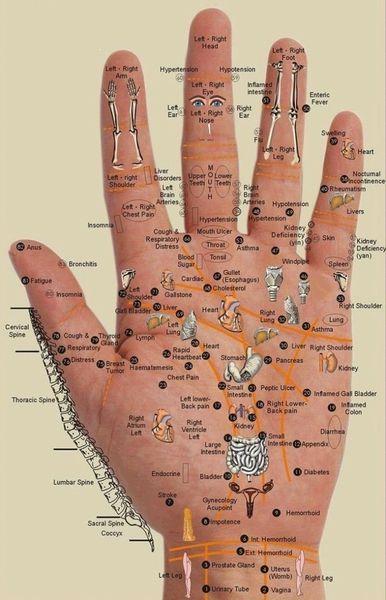 Appuyez sur ces points pour Partout où vous avez des douleurs - Chaque Partie du corps est dans la paume de votre main