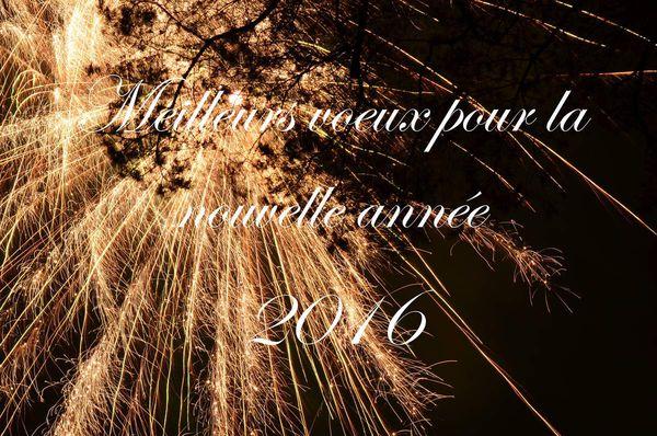 Une année de littérature: 2016 est là!