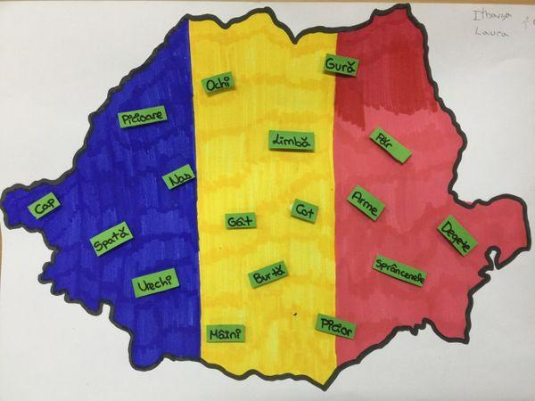 AMT1. LANGUAGE Linguistic Map