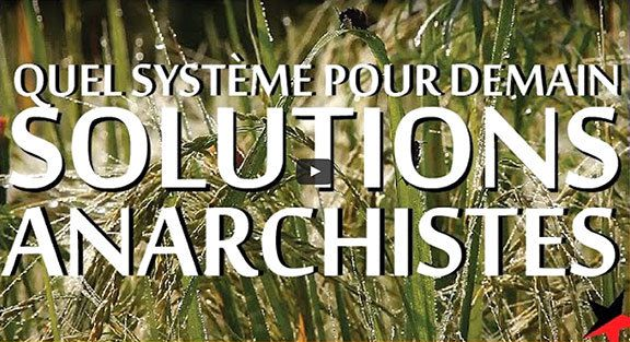 #écologie #anarchiste