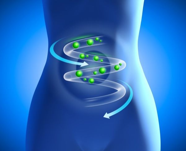 L'importance des probiotiques....